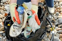 Local community encouraged to register for Douglas Beach Clean - picture