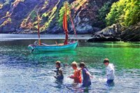 Garwick beach scene captures Island's essence - picture