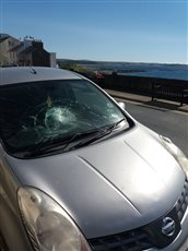 Motorist left with repair bill after windscreen damage - picture