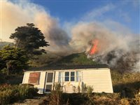 BBQ sparks huge headland fire in Dalby - picture