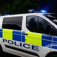 Police investigate after vehicle is damaged - picture