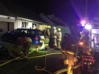 Dog rescued after house fire in Port Erin - picture