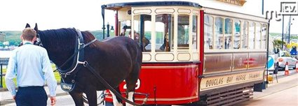 Isle of Man News Image - Horse tram service starts on new rails