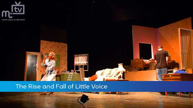 Preview of - The Rise and Fall of Little Voice