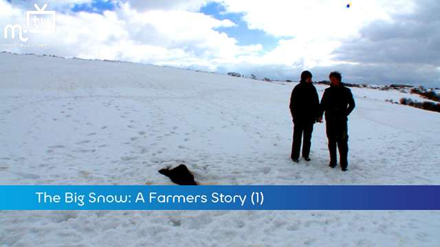 Preview of - The Big Snow: Farmer (1)