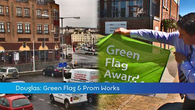 Preview of - Green Flag & Prom
