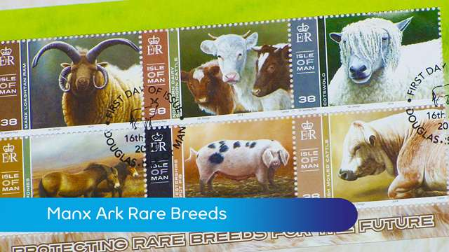 Preview of - Manx Ark rare breeds