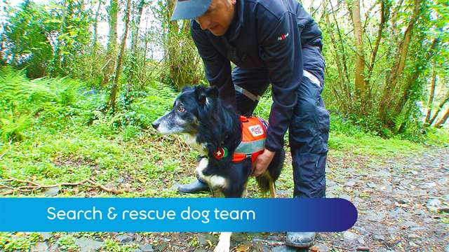 Preview of - Search and rescue dog team