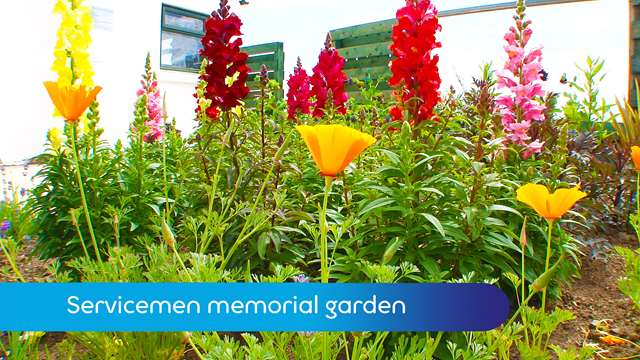 Preview of - Servicemen memorial garden