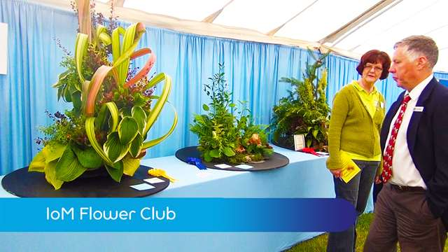 Preview of - Flower Club
