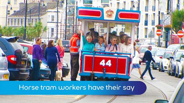 Preview of - Horse tram workers have their say