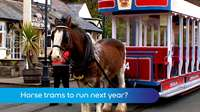 Horse trams next year?
