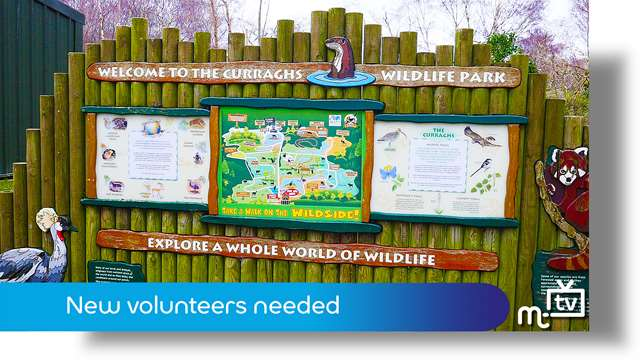 Preview of - New volunteers sought