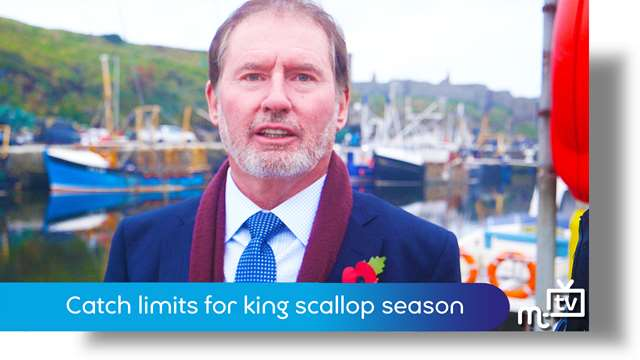 Preview of - Catch limits for king scallop season