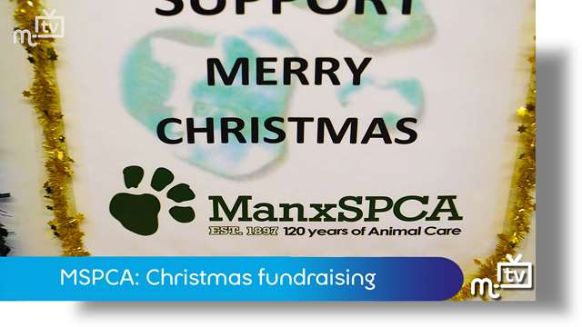 Preview of - MSPCA: Christmas fundraising