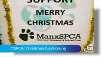 MSPCA: Christmas fundraising