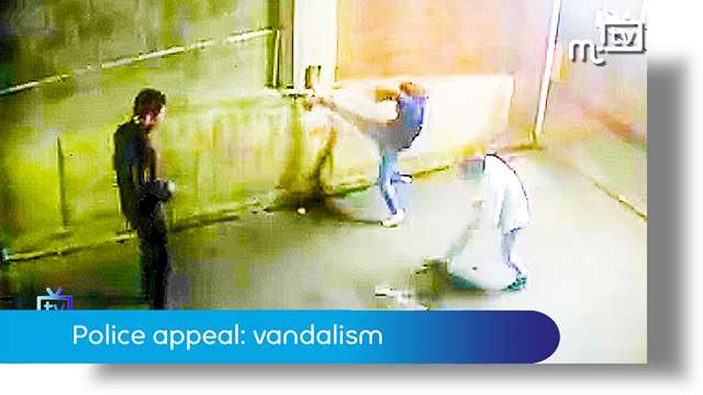 Preview of - Police appeal: vandalism