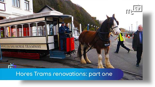 Preview of - Horse tram plans 2018: part one