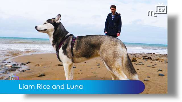 Preview of - Liam Rice and Luna