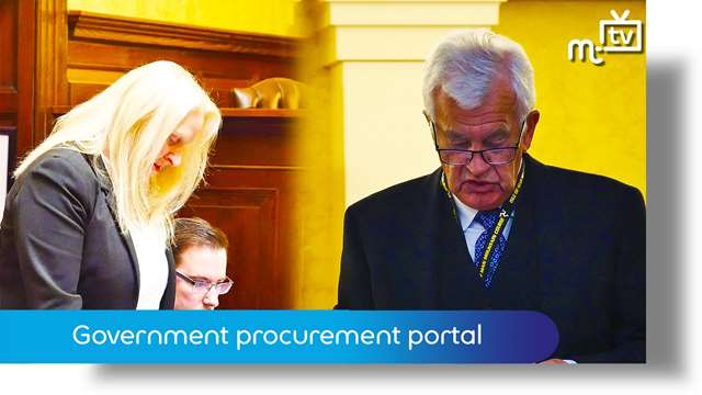 Preview of - Government procurement portal purpose