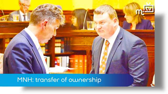 Preview of - MNH: transfer of ownership