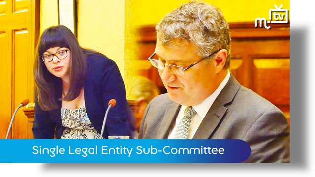 Preview of - Single Legal Entity Sub-Committee