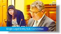 Single Legal Entity Sub-Committee