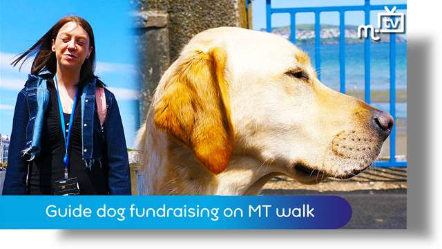 Preview of - Guide dog fundraising on MT parish walk
