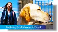 Guide dog fundraising on MT parish walk
