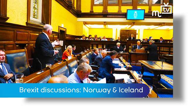 Preview of - Q2: Brexit discussions: Norway & Iceland