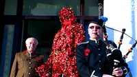 Poppy Appeal Launched