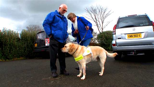 Preview of - Guide Dogs for the Blind (2)