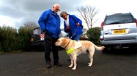 Guide Dogs for the Blind (2)